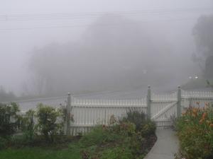 Katoomba 2007 1